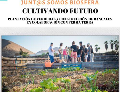 El Cabildo de Lanzarote y la asociación Perma Terra organizan una jornada de voluntariado en San Bartolomé