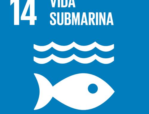 """Talleres """"Vivir en una Reserva de la Biosfera"""" y «Vida submarina» (#ODS 14)"""