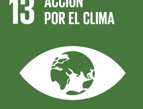 """Talleres """"Vivir en una Reserva de la Biosfera"""" y «Acción por el clima» (#ODS 13)"""